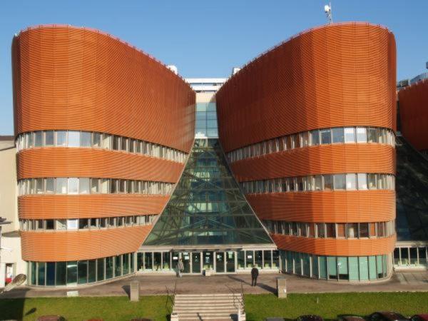Університет менеджменту у Варшаві